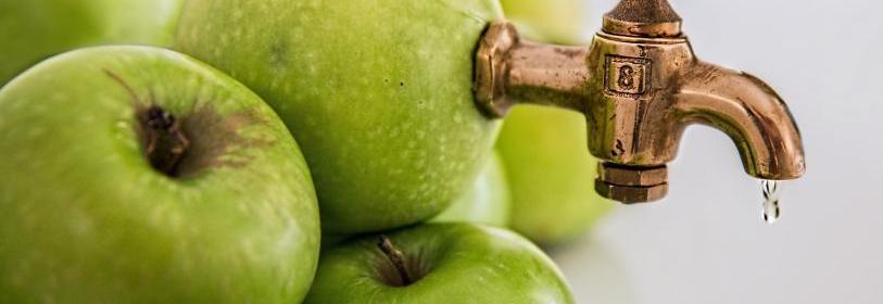 דיאטת חומץ תפוחים